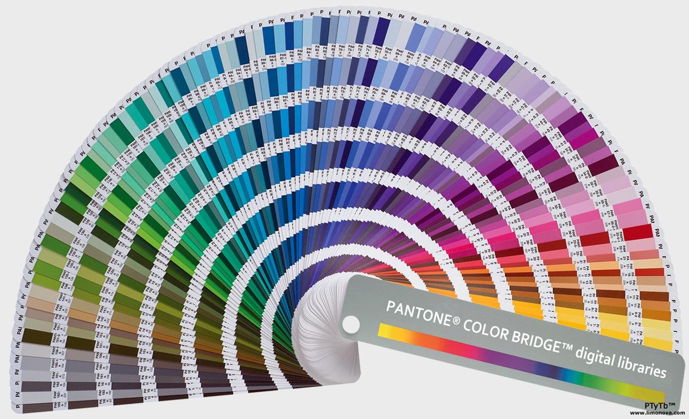 Denielle Emans Pantone Color System